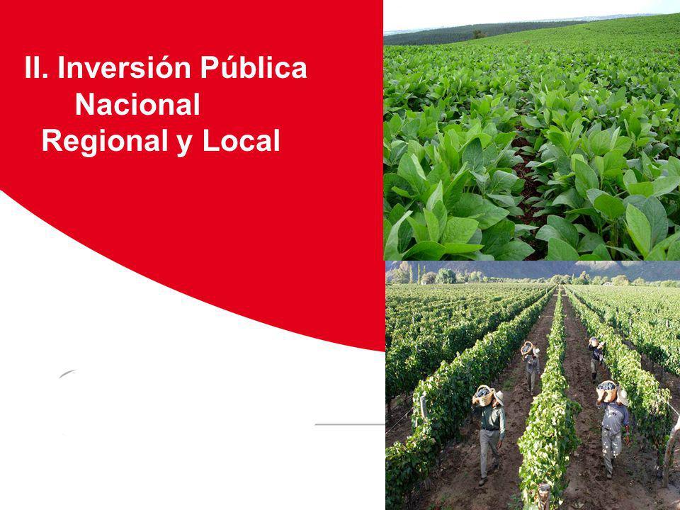 II. Inversión Pública Nacional Regional y Local Viñedos Floricultura Huanuco