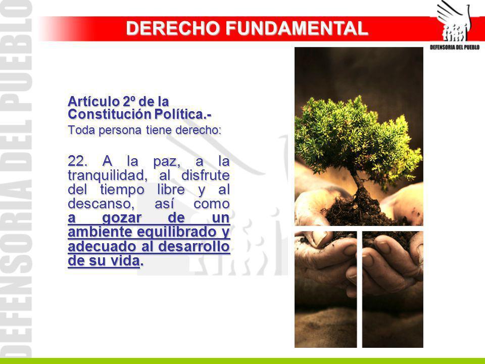 Artículo 2º de la Constitución Política.- Toda persona tiene derecho: 22. A la paz, a la tranquilidad, al disfrute del tiempo libre y al descanso, así