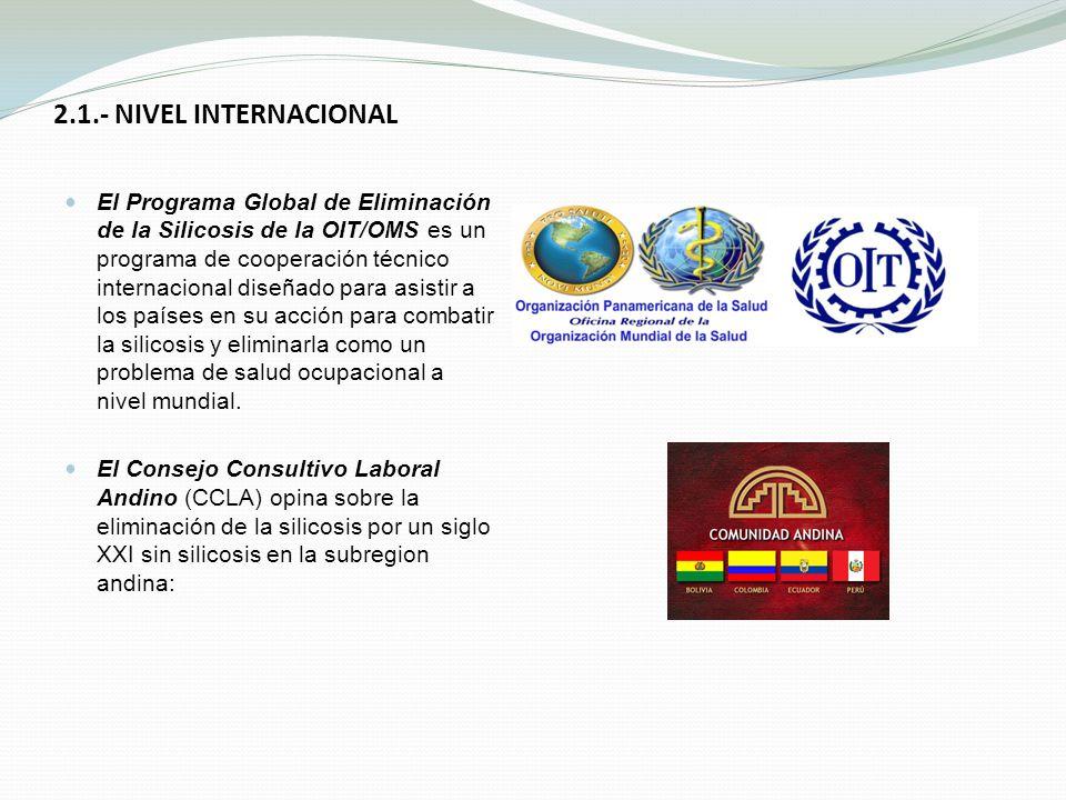 2.1.- NIVEL INTERNACIONAL El Programa Global de Eliminación de la Silicosis de la OIT/OMS es un programa de cooperación técnico internacional diseñado