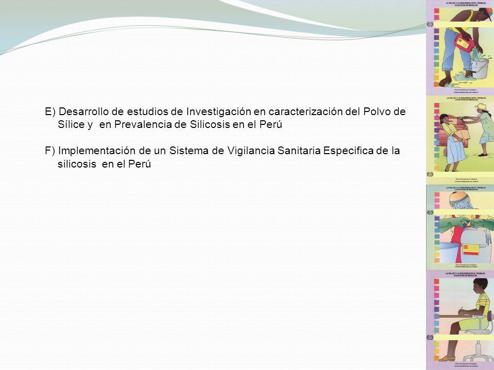 E) Desarrollo de estudios de Investigación en caracterización del Polvo de Sílice y en Prevalencia de Silicosis en el Perú F) Implementación de un Sis
