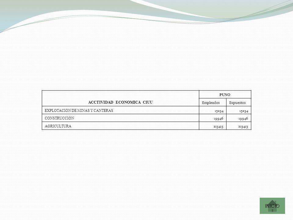 ACCTIVIDAD ECONOMICA CIUU PUNO EmpleadosExpuestos EXPLOTACI Ó N DE MINAS Y CANTERAS 15234 CONSTRUCCI Ó N 19946 AGRICULTURA 213413 INICIO