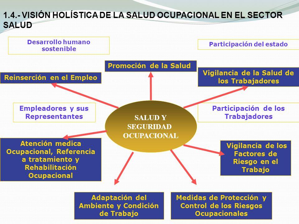 SALUD Y SEGURIDAD OCUPACIONAL Promoción de la Salud Reinserción en el Empleo Vigilancia de los Factores de Riesgo en el Trabajo Vigilancia de la Salud