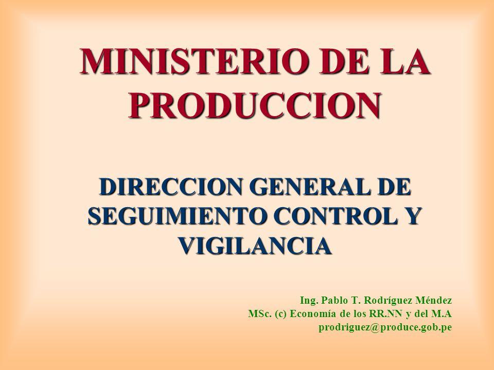 MINISTERIO DE LA PRODUCCION DIRECCION GENERAL DE SEGUIMIENTO CONTROL Y VIGILANCIA Ing.