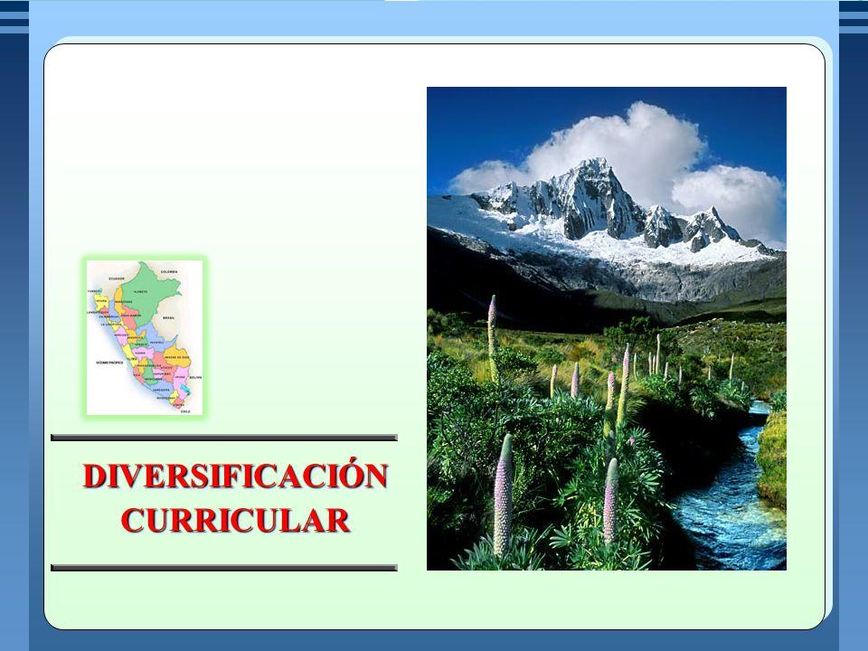 LINEAMIENTOS REGIONALES PARA LA DIVERSIFICACIÓN PROYECTO EDUCATIVO INSTITUCIONAL PROYECTO CURRICULAR INSTITUCIONAL DEMANDAS DEL SECTOR PRODUCTIVO NECESIDADES DE APRENDIZAJE DE ESTUDIANTES DIVERSIDAD EXISTENTE EN EL AULA AVANCE DE LA CIENCIAY TECNOLOGÍA DEMANDAS DEL ENTORNO LOCAL REGIONAL Y GLOBAL ORIENTACIONES PARA LA DIVERSIFICACION CURRICULAR A NIVEL LOCAL LOCAL