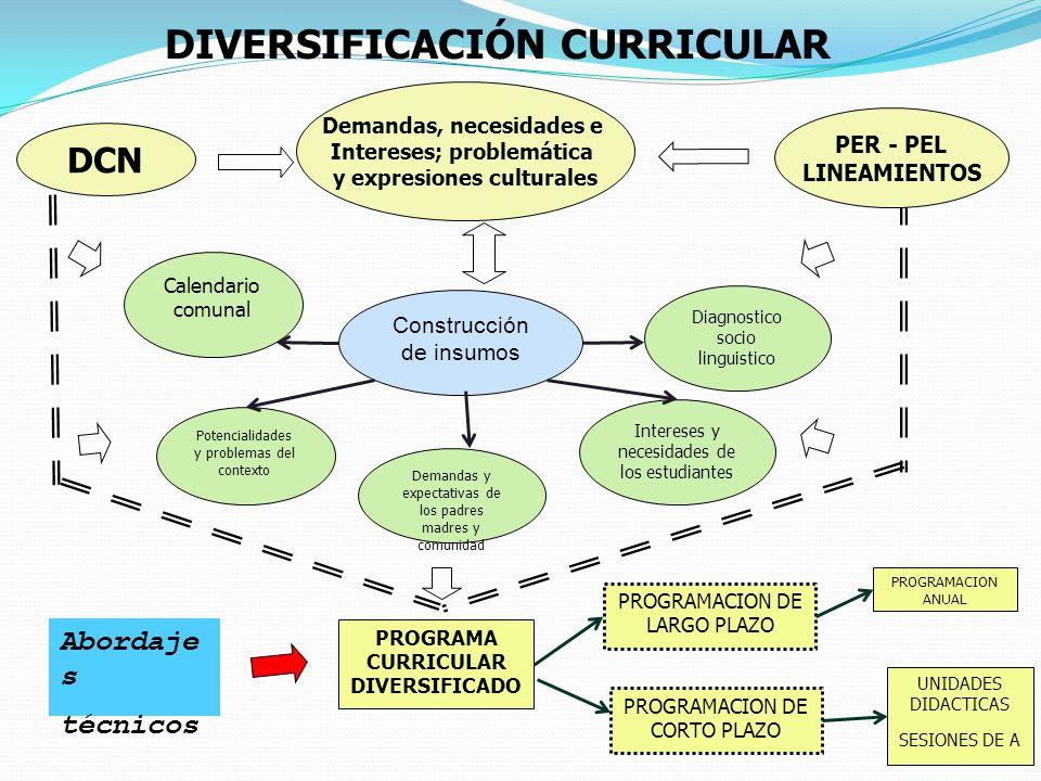 DCN Construcción de insumos Diagnostico socio linguistico Calendario comunal Demandas y expectativas de los padres madres y comunidad Potencialidades