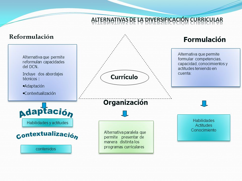 Reformulación Currículo Organización Formulación Alternativa que permite reformulan capacidades del DCN. Incluye dos abordajes técnicos : Adaptación C