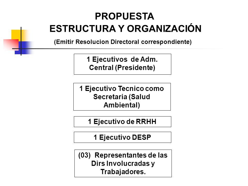 PROPUESTA ESTRUCTURA Y ORGANIZACIÓN (Emitir Resolucion Directoral correspondiente) 1 Ejecutivos de Adm. Central (Presidente) 1 Ejecutivo de RRHH 1 Eje