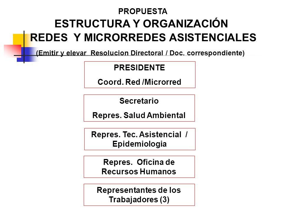 PROPUESTA ESTRUCTURA Y ORGANIZACIÓN REDES Y MICRORREDES ASISTENCIALES (Emitir y elevar Resolucion Directoral / Doc. correspondiente) PRESIDENTE Coord.