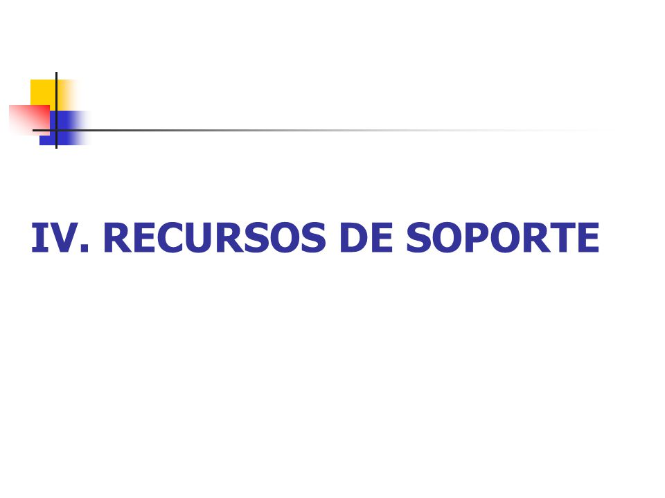 IV. RECURSOS DE SOPORTE