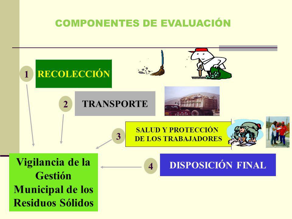 RECOLECCIÓN TRANSPORTE SALUD Y PROTECCIÓN DE LOS TRABAJADORES DISPOSICIÓN FINAL COMPONENTES DE EVALUACIÓN 1 4 3 2 Vigilancia de la Gestión Municipal d