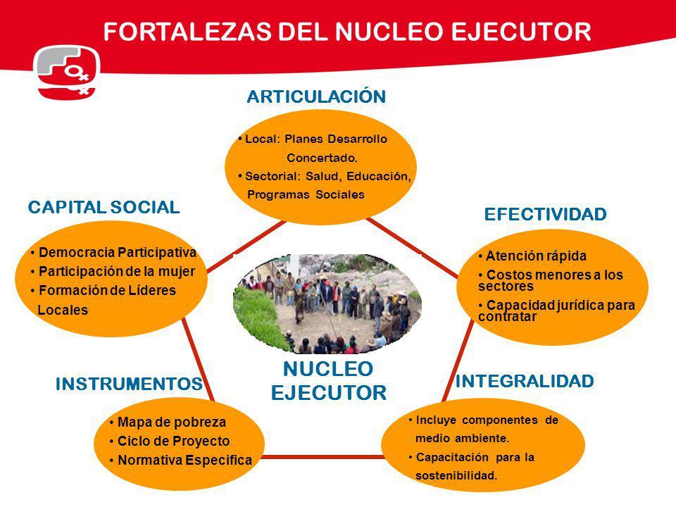FORTALEZAS DEL NUCLEO EJECUTOR Local: Planes Desarrollo Concertado. Sectorial: Salud, Educación, Programas Sociales CAPITAL SOCIAL EFECTIVIDAD INSTRUM