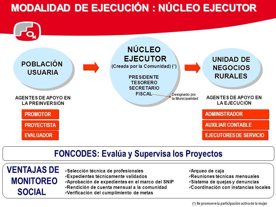MODALIDAD DE EJECUCIÓN : NÚCLEO EJECUTOR POBLACIÓNUSUARIAPOBLACIÓNUSUARIA AGENTES DE APOYO EN LA PREINVERSIÓN PROMOTOR PROYECTISTA EVALUADOR Designado
