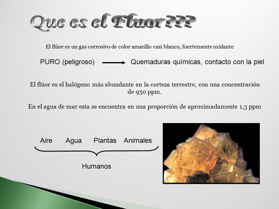 El flúor es un gas corrosivo de color amarillo casi blanco, fuertemente oxidante PURO (peligroso)Quemaduras químicas, contacto con la piel El flúor es