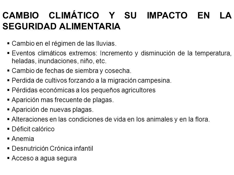 CAMBIO CLIMÁTICO Y SU IMPACTO EN LA SEGURIDAD ALIMENTARIA Cambio en el régimen de las lluvias. Eventos climáticos extremos: Incremento y disminución d