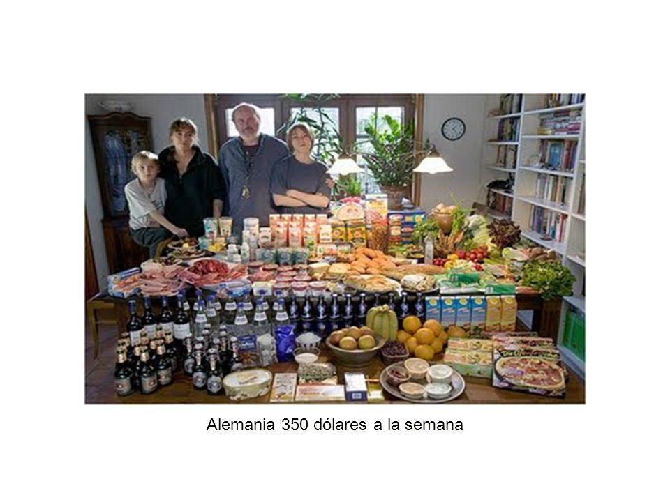 EJES ESTRATÉGICOS DE LA SEGURIDAD ALIMENTARIA Considerando que el problema de seguridad alimentaria es de carácter multifactorial, para enfrentarlo se proponen cuatro ejes estratégicos: a)Protección social de los grupos vulnerables.