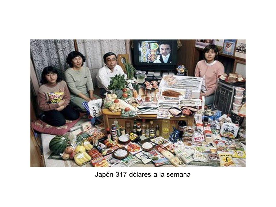 Japón 317 dólares a la semana