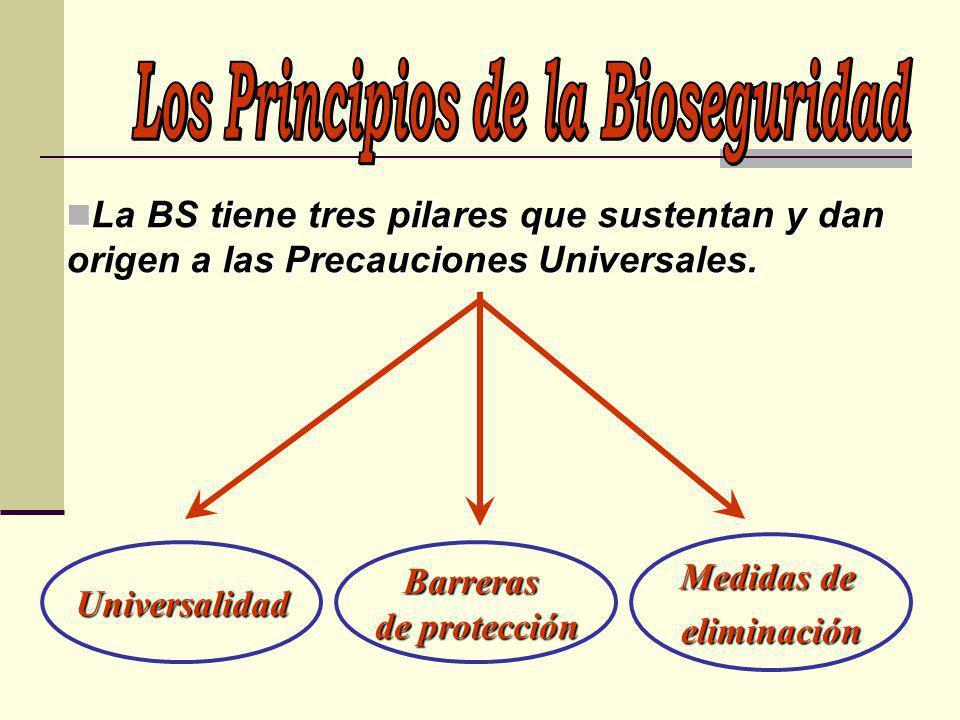 La BS tiene tres pilares que sustentan y dan origen a las Precauciones Universales. La BS tiene tres pilares que sustentan y dan origen a las Precauci