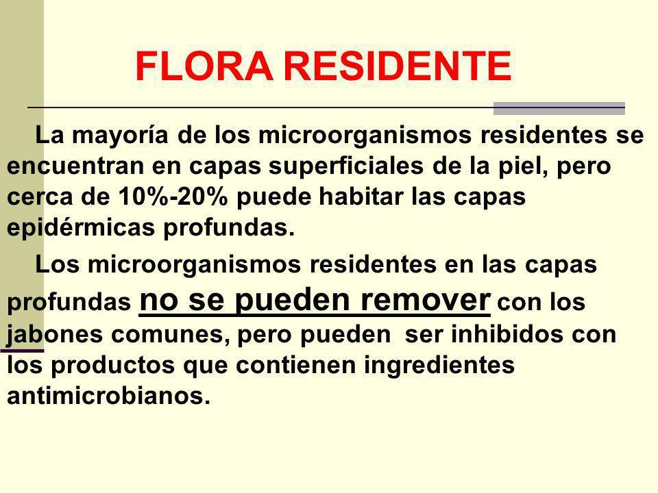 FLORA RESIDENTE La mayoría de los microorganismos residentes se encuentran en capas superficiales de la piel, pero cerca de 10%-20% puede habitar las