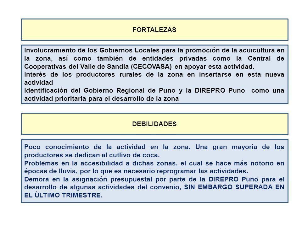 Involucramiento de los Gobiernos Locales para la promoción de la acuicultura en la zona, así como también de entidades privadas como la Central de Coo
