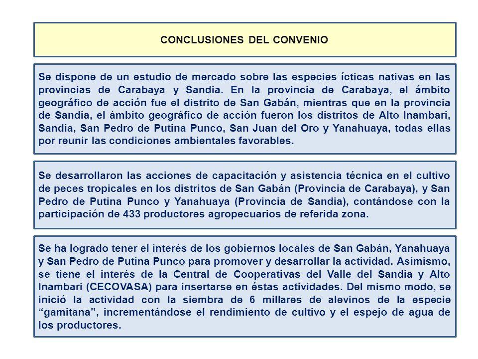 Se dispone de un estudio de mercado sobre las especies ícticas nativas en las provincias de Carabaya y Sandia. En la provincia de Carabaya, el ámbito
