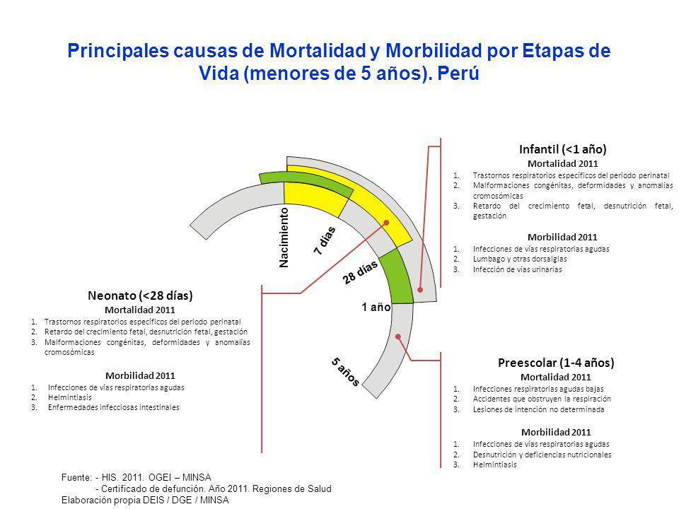 Nacimiento 7 días 28 días 1 año 5 años Neonato (<28 días) Mortalidad 2011 1.Trastornos respiratorios específicos del periodo perinatal 2.Retardo del crecimiento fetal, desnutrición fetal, gestación 3.Malformaciones congénitas, deformidades y anomalías cromosómicas Morbilidad 2011 1.Infecciones de vías respiratorias agudas 2.Helmintiasis 3.Enfermedades infecciosas intestinales Preescolar (1-4 años) Mortalidad 2011 1.Infecciones respiratorias agudas bajas 2.Accidentes que obstruyen la respiración 3.Lesiones de intención no determinada Morbilidad 2011 1.Infecciones de vías respiratorias agudas 2.Desnutrición y deficiencias nutricionales 3.Helmintiasis Infantil (<1 año) Mortalidad 2011 1.Trastornos respiratorios específicos del periodo perinatal 2.Malformaciones congénitas, deformidades y anomalías cromosómicas 3.Retardo del crecimiento fetal, desnutrición fetal, gestación Morbilidad 2011 1.Infecciones de vías respiratorias agudas 2.Lumbago y otras dorsalgias 3.Infección de vías urinarias Principales causas de Mortalidad y Morbilidad por Etapas de Vida (menores de 5 años).