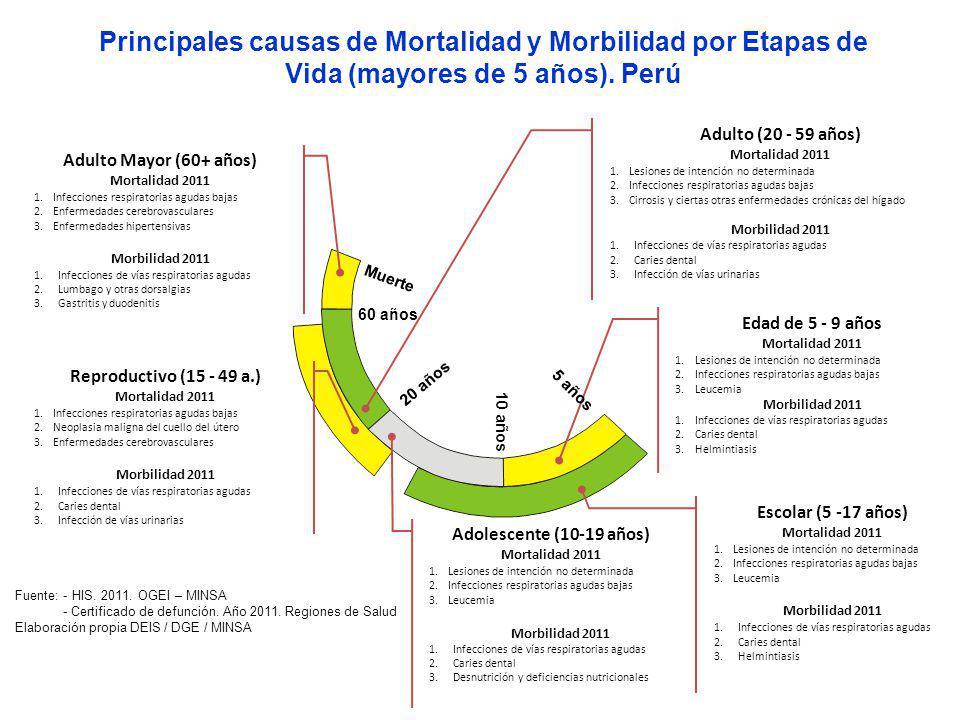 Escolar (5 -17 años) Mortalidad 2011 1.Lesiones de intención no determinada 2.Infecciones respiratorias agudas bajas 3.Leucemia Morbilidad 2011 1.Infe