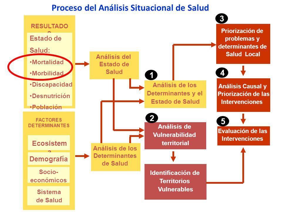Proceso del Análisis de la Mortalidad en el Perú