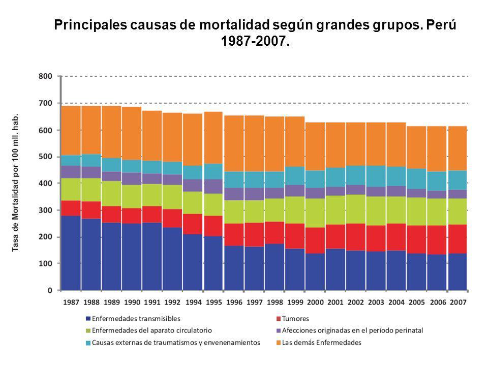 Principales causas de mortalidad según grandes grupos. Perú 1987-2007.