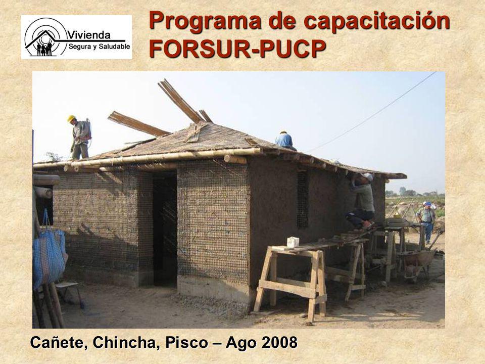 Programa de capacitación FORSUR-PUCP Cañete, Chincha, Pisco – Ago 2008