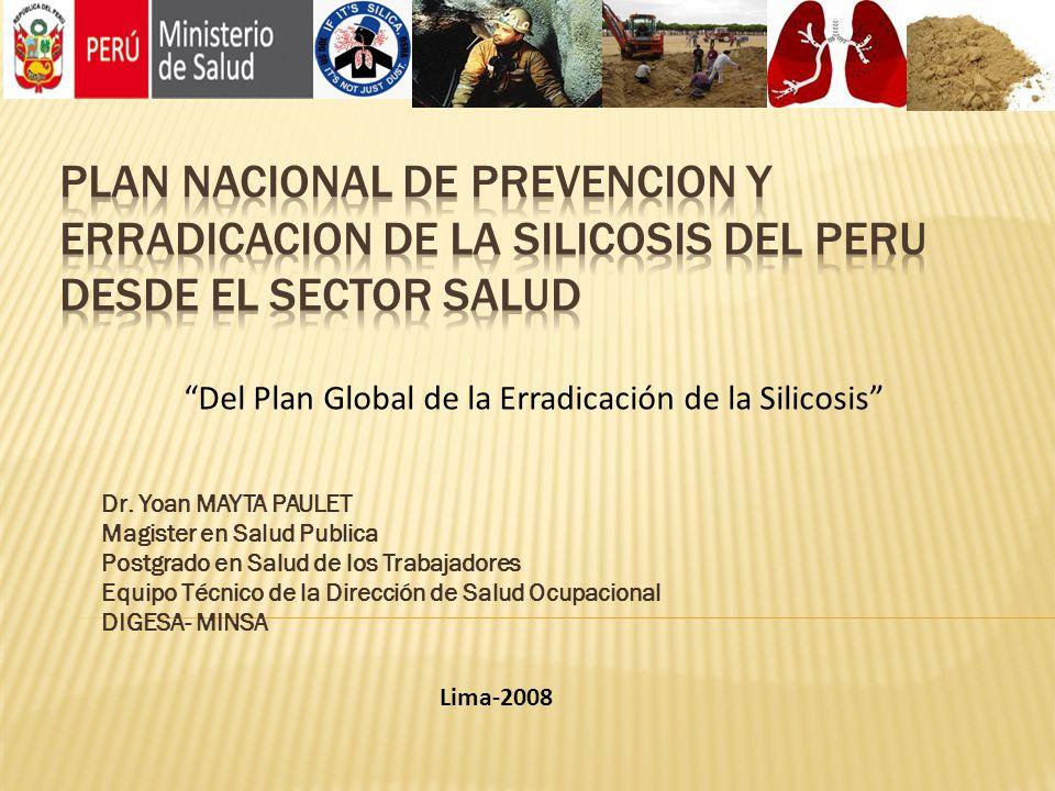 Dr. Yoan MAYTA PAULET Magister en Salud Publica Postgrado en Salud de los Trabajadores Equipo Técnico de la Dirección de Salud Ocupacional DIGESA- MIN