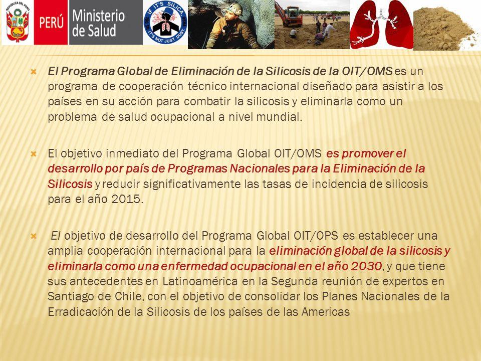 El Programa Global de Eliminación de la Silicosis de la OIT/OMS es un programa de cooperación técnico internacional diseñado para asistir a los países
