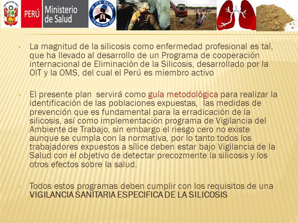 La magnitud de la silicosis como enfermedad profesional es tal, que ha llevado al desarrollo de un Programa de cooperación internacional de Eliminació