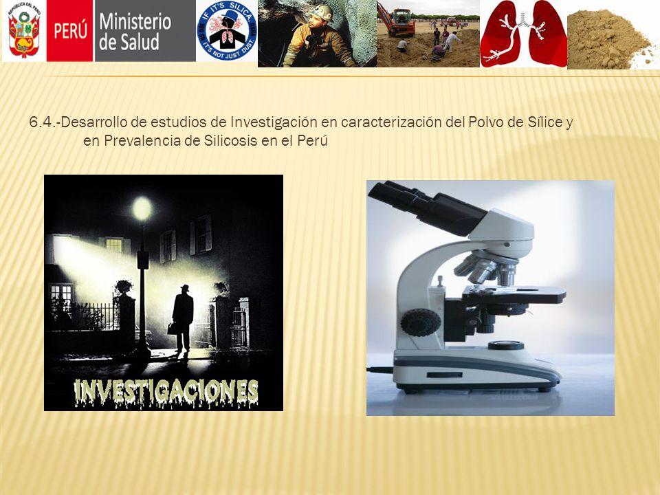 6.4.-Desarrollo de estudios de Investigación en caracterización del Polvo de Sílice y en Prevalencia de Silicosis en el Perú