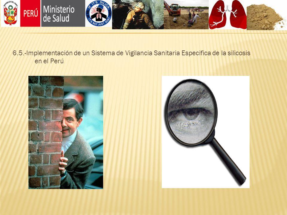 6.5.-Implementación de un Sistema de Vigilancia Sanitaria Especifica de la silicosis en el Perú