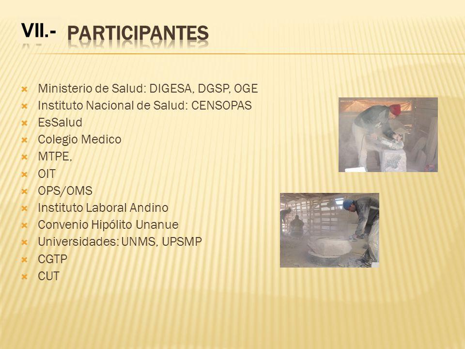 Ministerio de Salud: DIGESA, DGSP, OGE Instituto Nacional de Salud: CENSOPAS EsSalud Colegio Medico MTPE, OIT OPS/OMS Instituto Laboral Andino Conveni