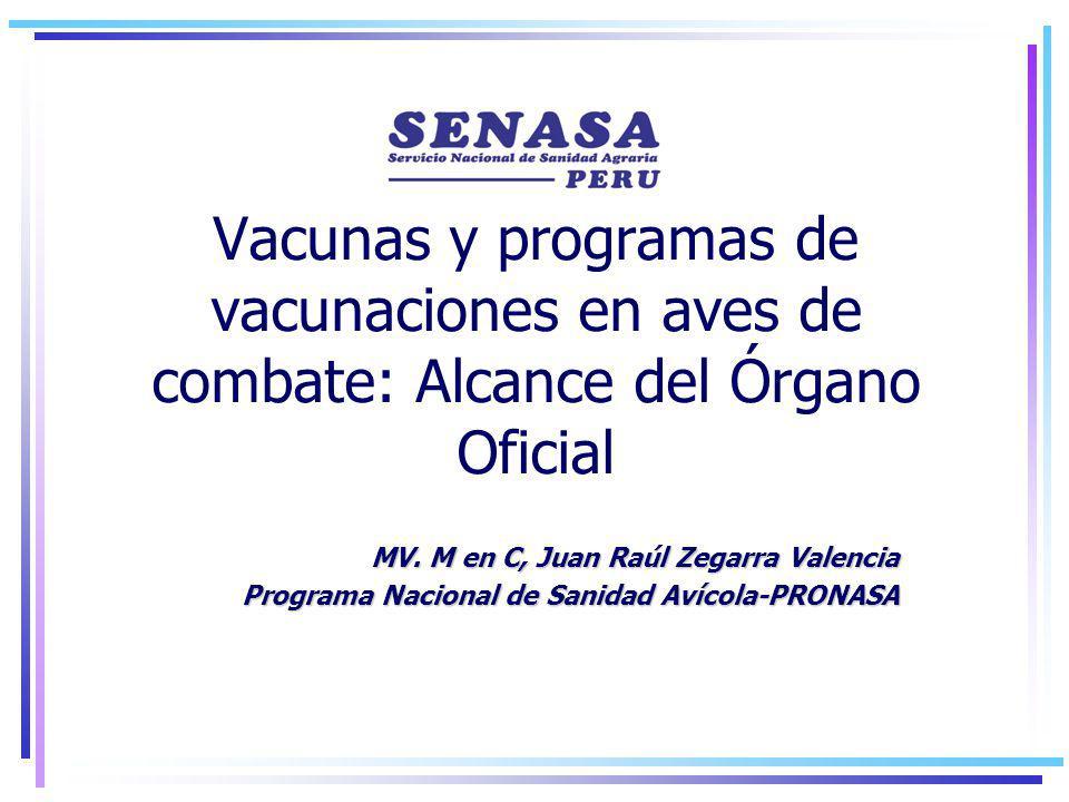 Vacunas y programas de vacunaciones en aves de combate: Alcance del Órgano Oficial MV.