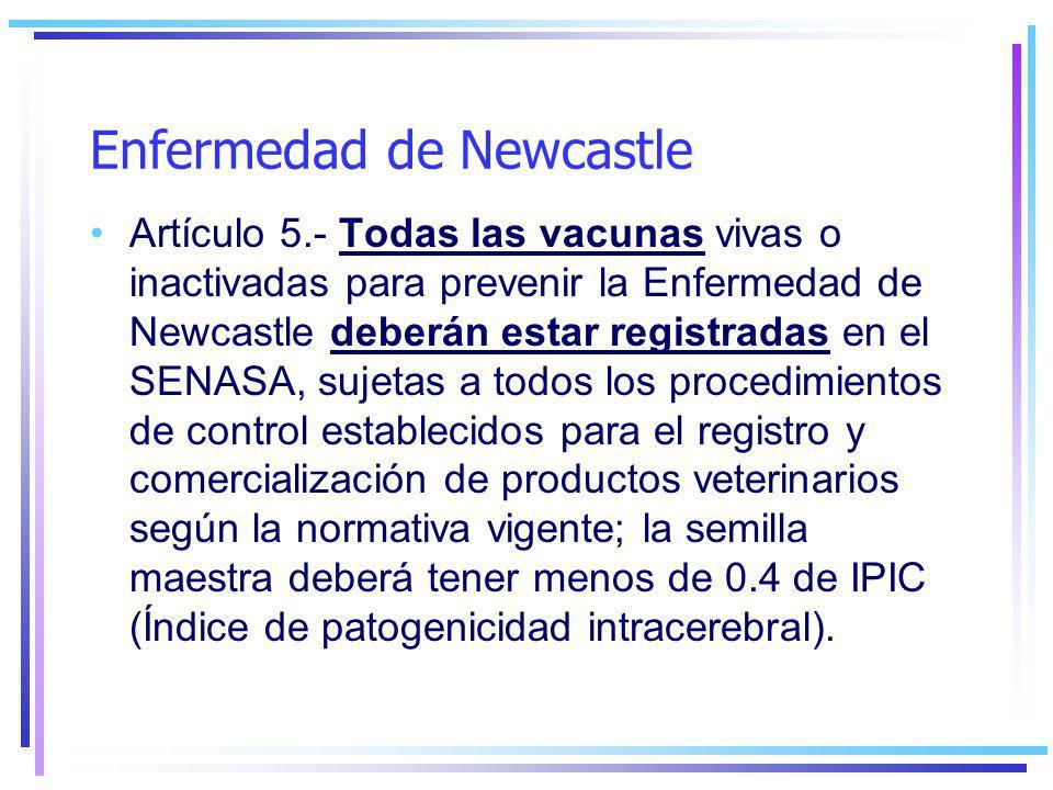Enfermedad de Newcastle Artículo 5.- Todas las vacunas vivas o inactivadas para prevenir la Enfermedad de Newcastle deberán estar registradas en el SENASA, sujetas a todos los procedimientos de control establecidos para el registro y comercialización de productos veterinarios según la normativa vigente; la semilla maestra deberá tener menos de 0.4 de IPIC (Índice de patogenicidad intracerebral).