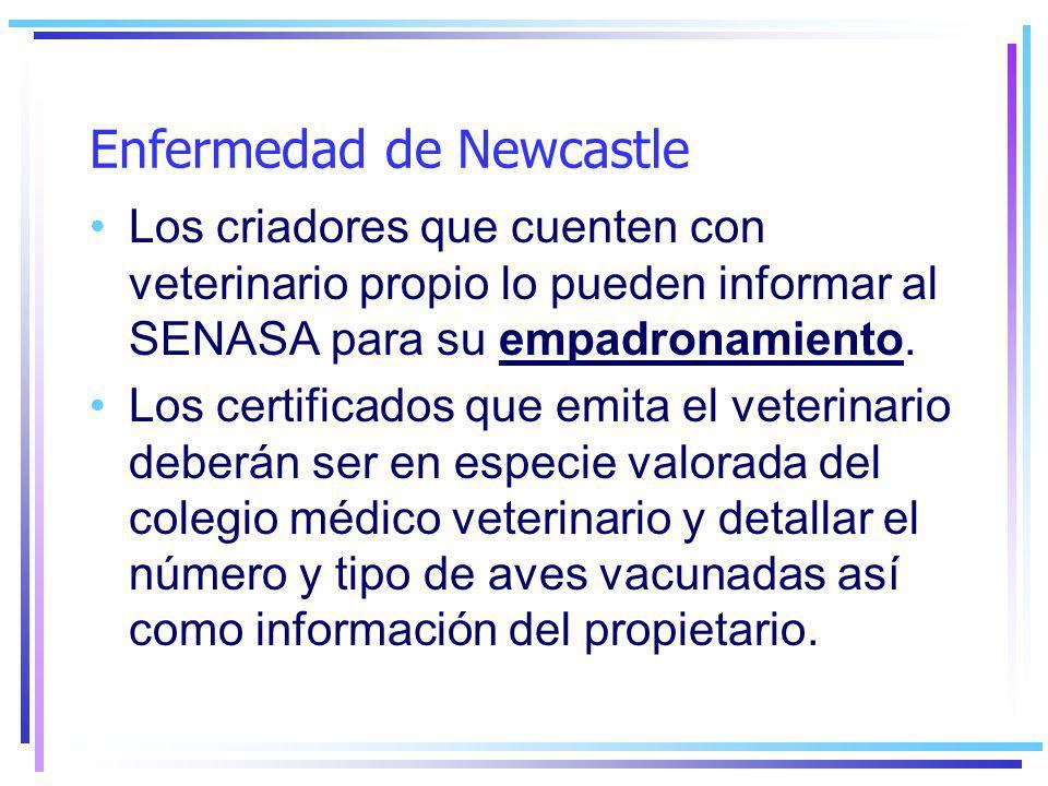 Enfermedad de Newcastle Los criadores que cuenten con veterinario propio lo pueden informar al SENASA para su empadronamiento.