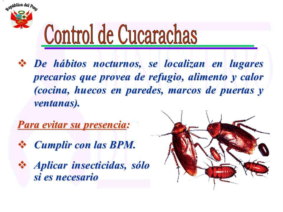 Para evitar su presencia: Cumplir con las BPM. Cumplir con las BPM. Aplicar insecticidas, sólo si es necesario Aplicar insecticidas, sólo si es necesa