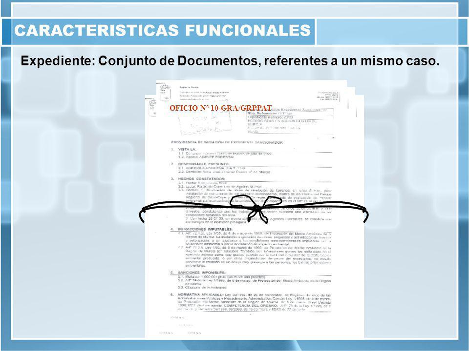 Expediente: Conjunto de Documentos, referentes a un mismo caso.