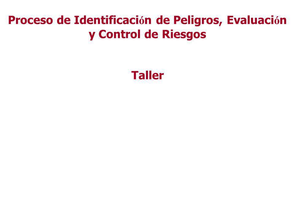 Resumen del PIPECR Organización del PIPECR Identificación de peligros Evaluación de riesgo (Estimación y valoración ) Informe Propuesta medidas Contro