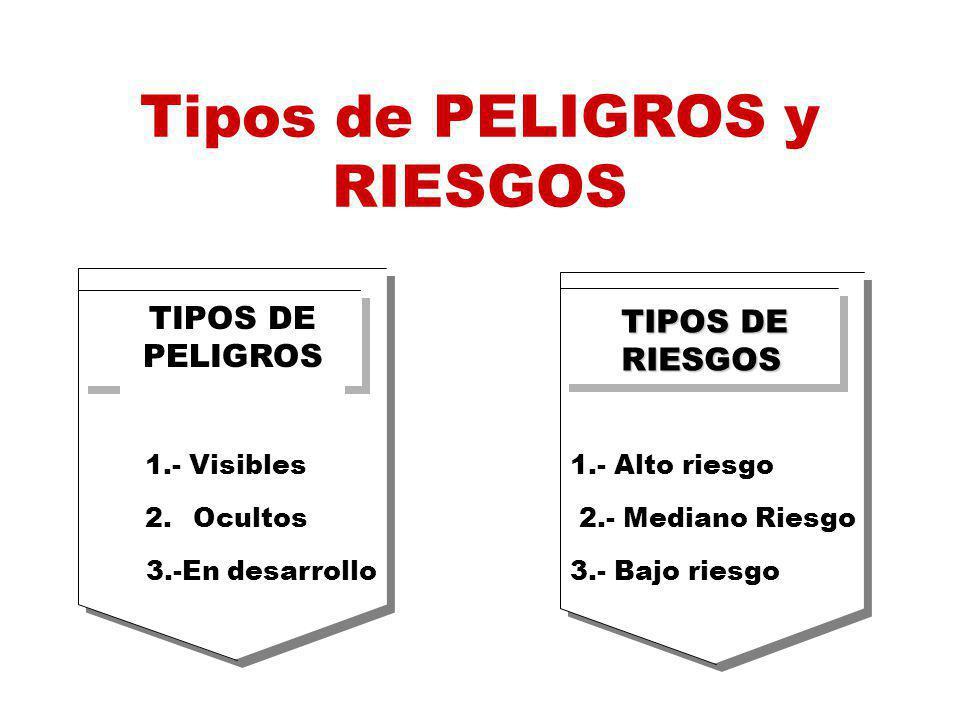 TIPOS DE PELIGROS 1.- Visibles 2.Ocultos 3.-En desarrollo TIPOS DE RIESGOS 1.- Alto riesgo 2.- Mediano Riesgo 3.- Bajo riesgo Tipos de PELIGROS y RIESGOS