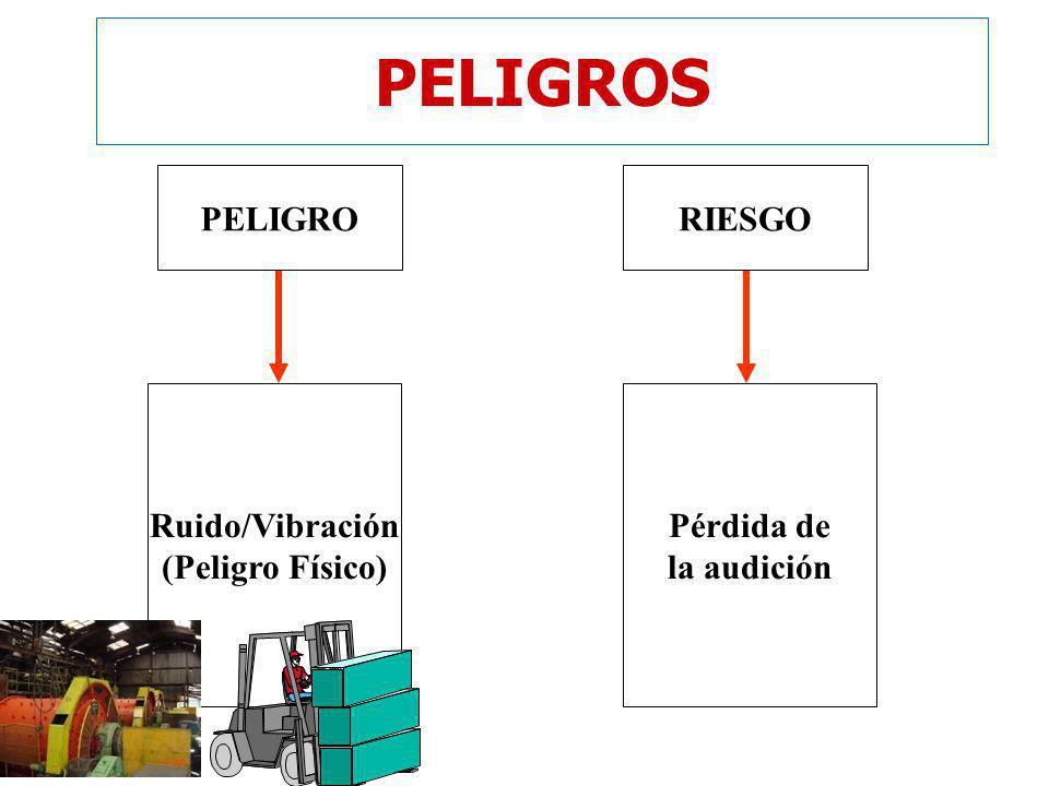 9 PELIGROS Ruido/Vibración (Peligro Físico) Pérdida de la audición RIESGOPELIGRO
