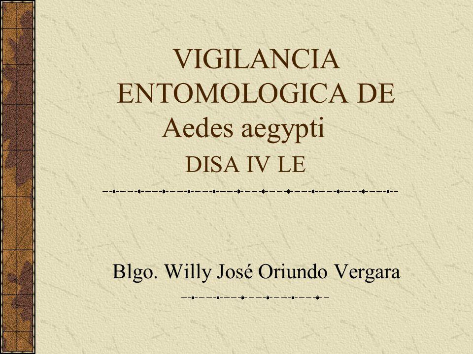 VIGILANCIA ENTOMOLOGICA DE Aedes aegypti DISA IV LE Blgo. Willy José Oriundo Vergara