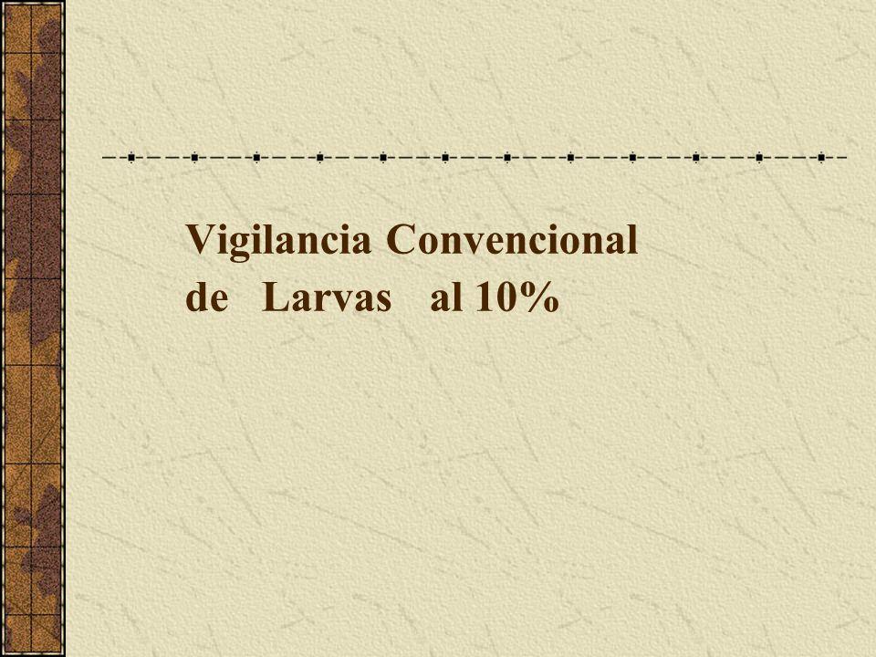 Vigilancia Convencional de Larvas al 10%