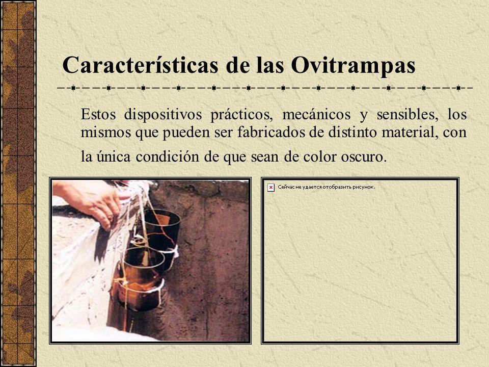 Características de las Ovitrampas Estos dispositivos prácticos, mecánicos y sensibles, los mismos que pueden ser fabricados de distinto material, con