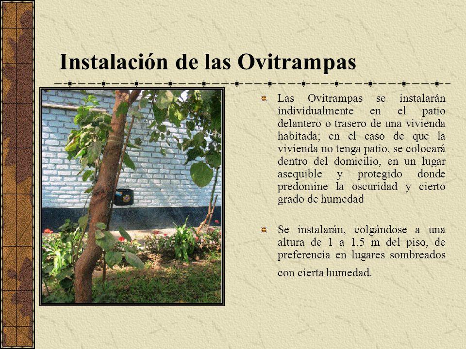Instalación de las Ovitrampas Las Ovitrampas se instalarán individualmente en el patio delantero o trasero de una vivienda habitada; en el caso de que