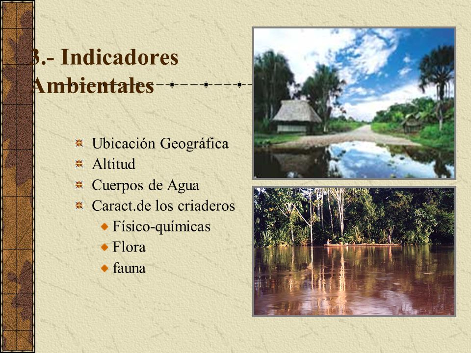 3.- Indicadores Ambientales Ubicación Geográfica Altitud Cuerpos de Agua Caract.de los criaderos Físico-químicas Flora fauna