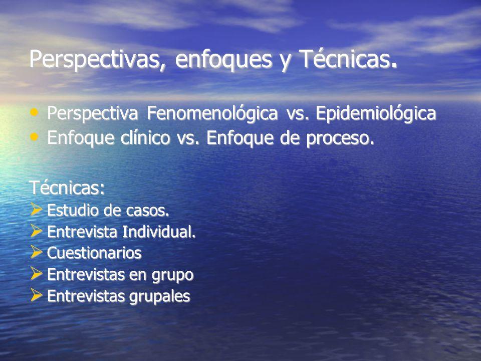 Perspectivas, enfoques y Técnicas. Perspectiva Fenomenológica vs.