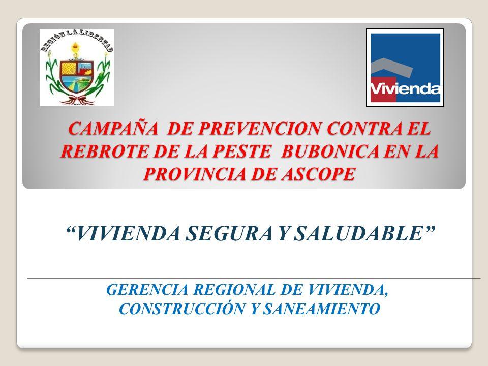 INTRODUCCION Con la finalidad de contribuir a prevenir el rebrote de la peste bubónica en la Provincia de Ascope, así como por el incremento de enfermedades como la tuberculosis, entre otras.